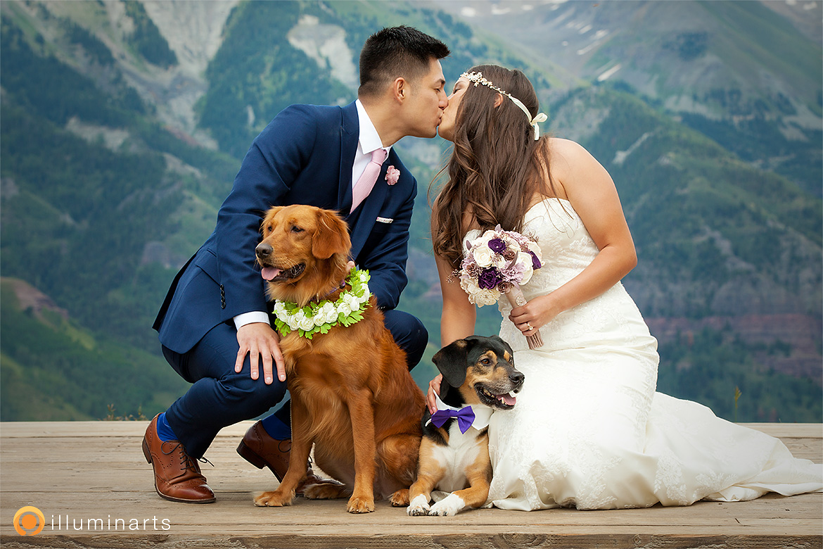 Dogs at Weddings in Telluride, Colorado