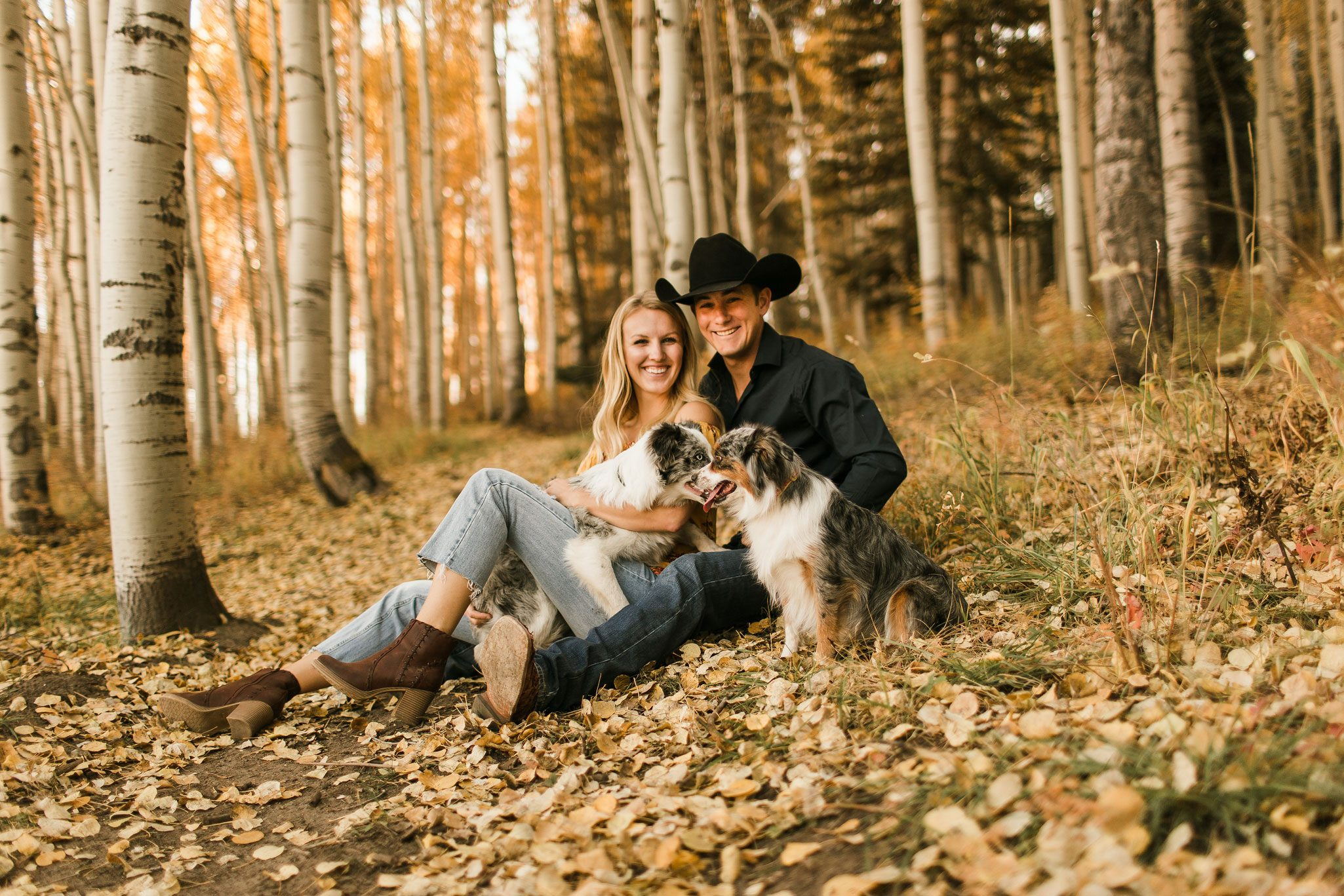 An Autumn Photo Session in the aspens with dogs in Durango, Colorado