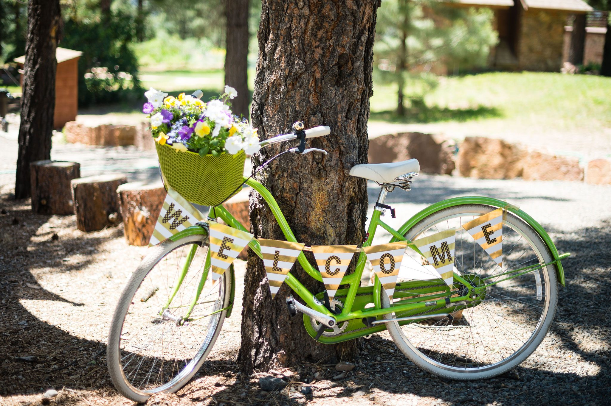 Welcome to our bike themed wedding