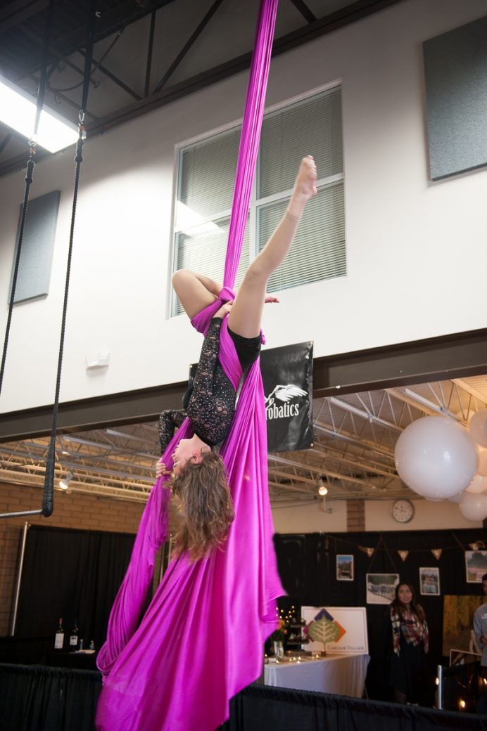 Aerialist from Alpine Aerial Acrobatics at the Durango Wedding Expo