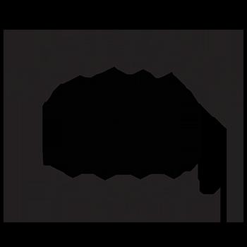 Shutterfreek wedding photography