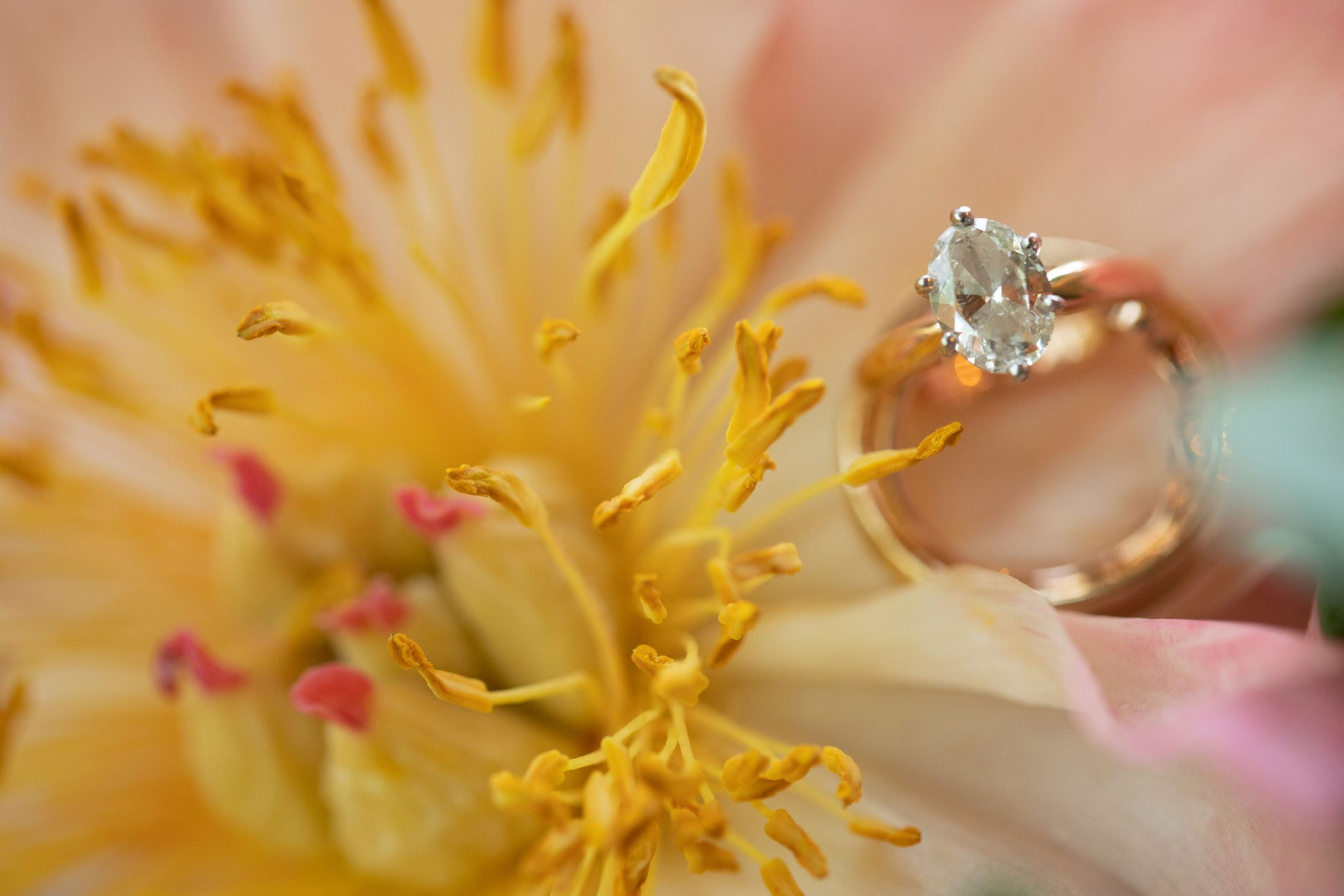 Peony & ring shot | Durango Weddings Magazine