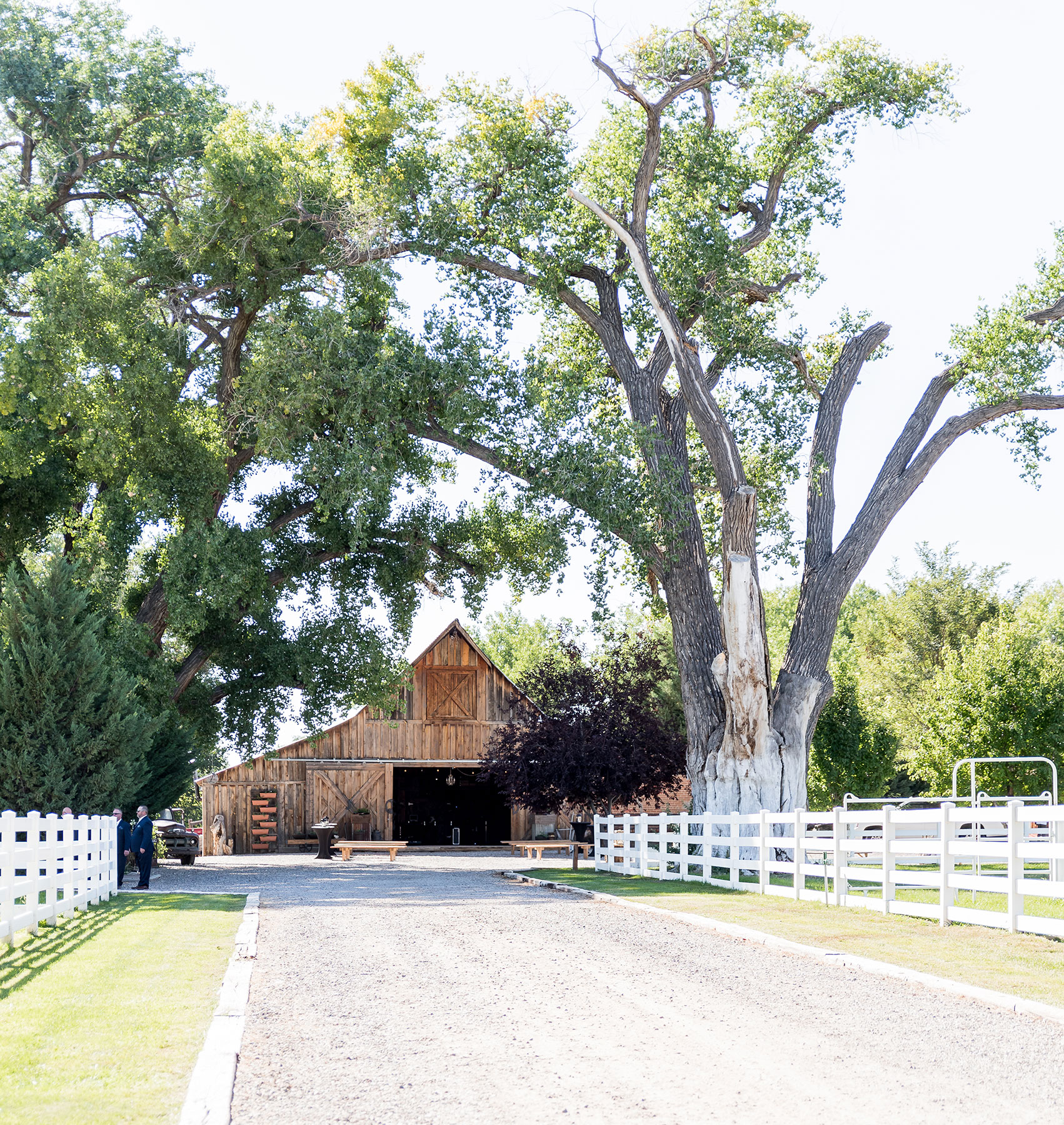 Triple J Ranch Wedding, New Mexico