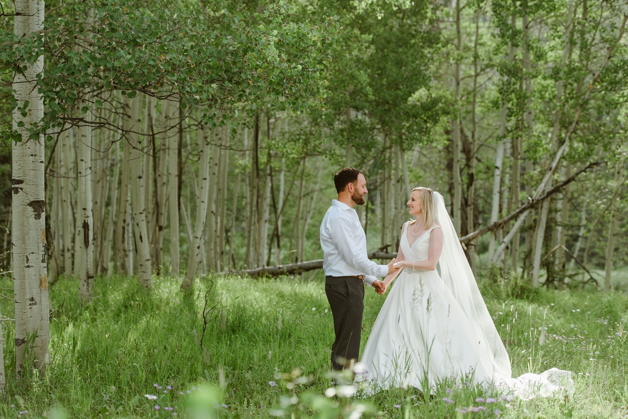 First Look in the forest